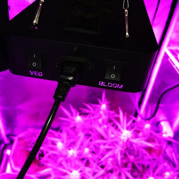 E900 Grow LIght
