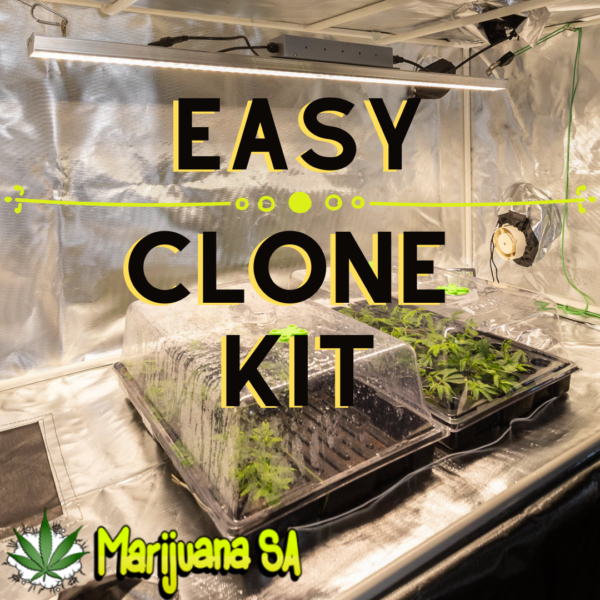 MSA Easy Clone Kit