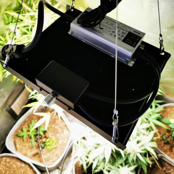 QTM150 Grow Light