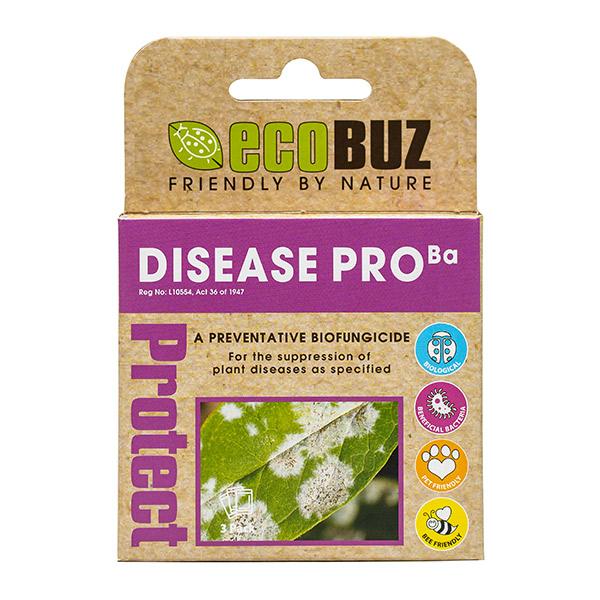 disease pro