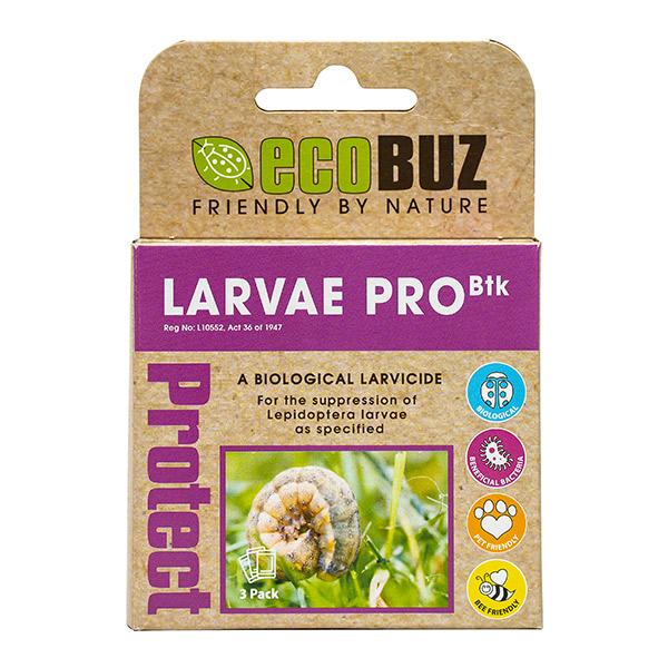 larvae pro