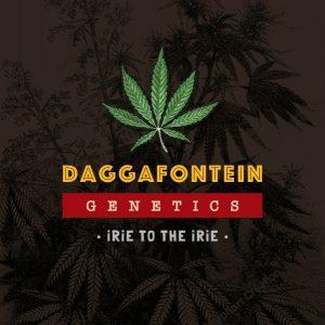 daggafontein genetics