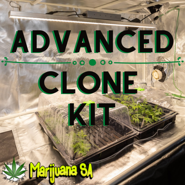 MSA Advanced Clone Kit