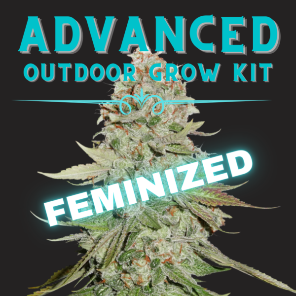 Advanced Outdoor grow kit
