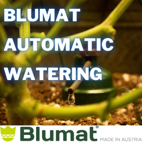 Blumat Automated Watering