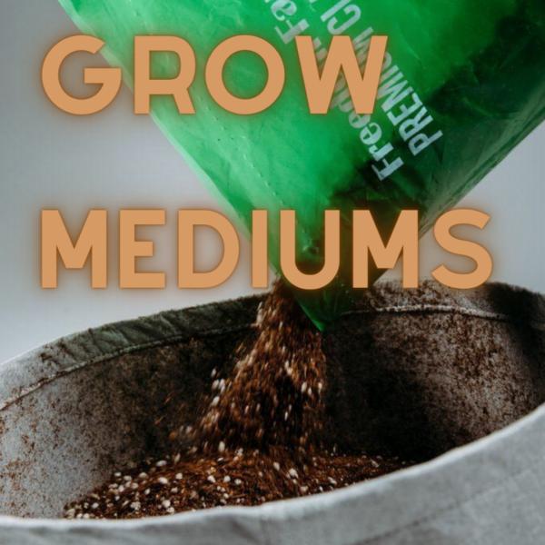 Cannabis Growing Mediums