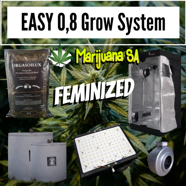 Feminized Easy 0.8m Grow system