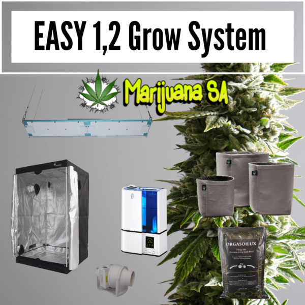 Easy grow kit