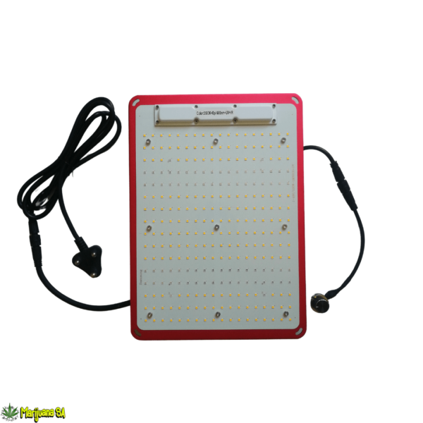 KingBrite 120w LM301H Grow Light